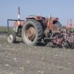 Farm tractor — Stock Photo #35428969
