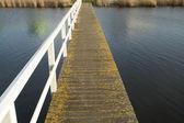 Puente sobre aguas turbulentas — Foto de Stock