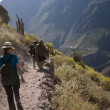 Stock Photo: Trekking on trail in Peru