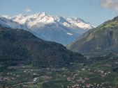 Vinschgau valley — Stock Photo