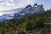 Torres del paine in Chilean National Park Los Cuernos — Stock Photo