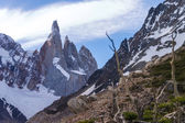 Cerro Torre from close to the laguna — Stock Photo