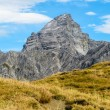 Stock Photo: Impressive alpine peak with yellow grass