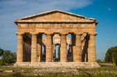 Temple at Paestum Italy frontal — Stok fotoğraf