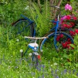 Stock Photo: Old bike between flowers in garden with three wheeler