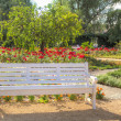 Stock Photo: White wooden bench in flowered colourful park