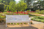 White wooden bench in a flowered colourful park — Stock Photo