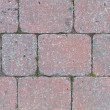 Cobbles of street in red and grey — Stock Photo #31133863