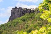 Lilienstein close to Bad Schandau — Stock Photo