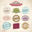 Set of autumn sales related vintage labels — Stock Vector #32076877
