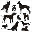 Stock Vector: Dogs silhouettes