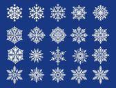 White snowflakes — Stock Vector