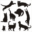 Stock Vector: Silhouette of cat