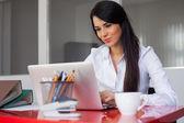 工作用的笔记本电脑的女商人 — 图库照片