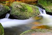 A mountain stream at the foot of the Brocken — Stock Photo