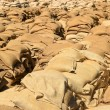 Filled sandbags — Stock Photo