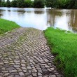 Flooded street during floods in Magdeburg — Stock Photo #26655805