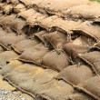 Sandbags after the flood in Magdeburg — Stock Photo