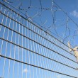 Stock Photo: Barbed wire on fence