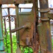 Old historic iron gate in Karlovy Vary — Stock Photo