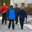 Nordic Walking — Stock Photo #40138489