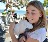 Cockatoo bird hugging girl — Stock Photo