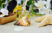 Conch seashell sand inställning — Stockfoto