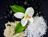 Sea Salt & Flowers — Stockfoto