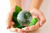 Eco Hands & Globe — Stock Photo