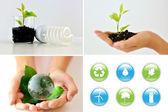 Eco Friendly Collage — Stock Photo