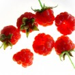 Stock Photo: rasberry