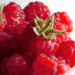 Rasberry — Stock Photo #22127015