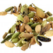Cardamom spice — Stock Photo