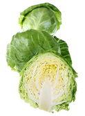 Cabbage fresh — Stock Photo