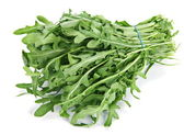 Arugula herb — Stock Photo