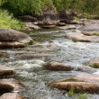 River rapids — Stock Photo #22332709