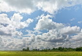 Landscape with blue sky — Stockfoto