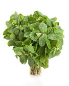 Spearmint herb — Stock Photo