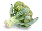 Broccoli cabbage — Stock Photo
