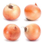 Orange onion vegetable — Foto Stock