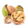 Open walnut - Foto de Stock