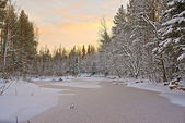 Winter river. — Foto Stock
