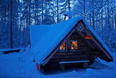 A house in winter forest. — Stock Photo