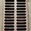 Stock Photo: Drainage cover