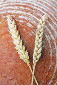 Loaf of bread and corn ears — Stock Photo