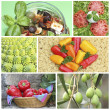 Collage Bella Italia - typical italian fresh food - Stock Photo