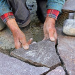 Hands of senior gardener paving natural stone terrace, professional precision work - Stock Photo