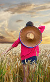 Teenage girl, with mexican hat, in the cornfield — Stockfoto