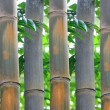 Textured bamboo background — Stock Photo