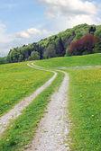 Hiking trail in springlike landscape — Stock Photo